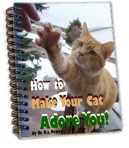 How To Make Your Cat Adore You Review